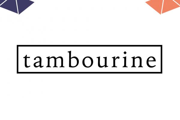 IL CIRCUITO ELETTRONICO DEL TAMBOURINE